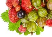 Fresh berries isolated on white — Stock Photo