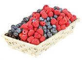 熟した果実の分離 — ストック写真