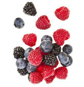 Blackberries (dewberries), blueberries, raspberries — Stock Photo