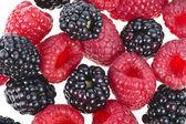 Blackberries (dewberries) with raspberries on white background — Stock Photo