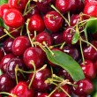 Cherry background — Stock Photo #15409261