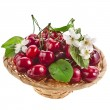 Cherries in a basket isolated on white — Stock Photo #15411227