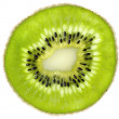 Kiwi slice on white background - Stock Photo