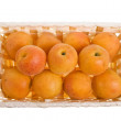 Apricots in the basket isolated on white background — Stock Photo #15413361