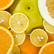 Citrus background — Stock Photo #15414673