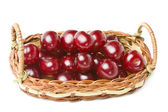 Cherries in a basket isolated on white background — Stock Photo