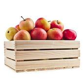 Caja caja de madera llena de manzanas frescas aisladas sobre un fondo blanco — Foto de Stock