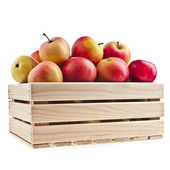 Wooden crate box full of fresh apples isolated on a white background — Foto de Stock