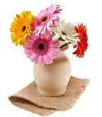 Bouquet flowers gerbera in a wooden vase on a white background — Stock Photo