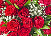 Red roses bouquet background — Stock Photo