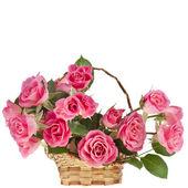 Rose bouquet bella rosa in un cesto isolato su sfondo bianco — Foto Stock