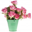 Pink rose bouquet in a green bucket isolated on white background — Stock Photo