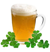 Shamrock clover and beer - - symbol of holiday St Patrick's Day — Stock Photo