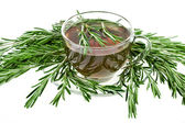 Herbal tea with rosemary isolated — Stock Photo