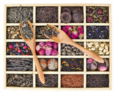 Different tea types: green, black, floral, herbal in a wooden box with bamboo spoons — 图库照片