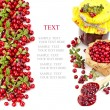 Cranberries isolated on white background — Stock Photo #15891041