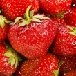 Fresh strawberry — Stock Photo #15894751