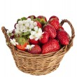 Sweet strawberry and cherries with flowers in basket isolated on white background — Stock Photo #15894959