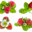 Fresh strawberry fruits isolated — Stock Photo #15895313