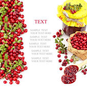 Cranberries isolated on white background — Stock Photo
