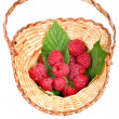 Raspberries in wicker basket — Stock Photo