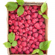 Stock Photo: Red raspberries in the cardboard box isolated