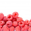 Raspberry isolated — Stock Photo #16036449