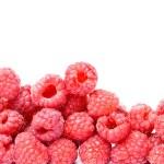 Raspberry isolated — Stock Photo #16036449