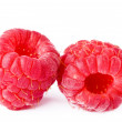 Raspberry isolated — Stock Photo #16036881