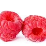 Raspberry isolated — Stock Photo #16036881