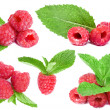 Collection red raspberries with green leafs mint isolated on white background — Stock Photo #16039157