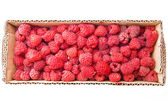 Raspberries in the cardboard box isolated on white background — Stock Photo