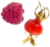 Raspberry and rosehip berries — Stock Photo