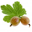 Gooseberries isolated on a white background - Stock Photo