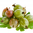 Gooseberries isolated on a white background — Stock Photo #16047795