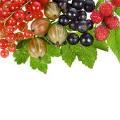 Sweet berries isolated on white — Stock Photo