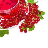 örtte med röda vinbär extrakt och bär isolerad på vit — Stockfoto