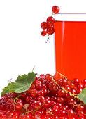 Röda vinbär dryck och bär isolerad på vit — Stockfoto