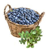 Blueberry in basket isolated over a white — Stock Photo