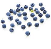 Fresh blueberries isolated on white background — Stock Photo