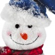 Christmas Snowman with scarf and santa claus hat — Stock Photo #17178385