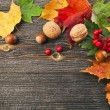 Autumn Leaves and nut over wooden texture background with copy space — Stock Photo #17183869