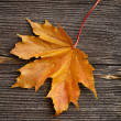 Autumn leaf on old wooden board desk — Stock Photo