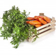 Fresh carrots in a wooden box — Stock Photo #17184135