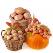 Autumn fruits and nuts isolated on white background — Stock Photo
