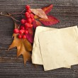 Stock Photo: Autumn leaves with paper sheet