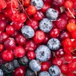 Close up of frozen mixed fruit and berries — Stock Photo #17184851