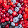 Close up of frozen mixed fruit and berries — Stock Photo