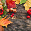 Autumn Leaves and nut over wooden texture background with copy space - Stock Photo
