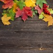 Autumn Leaves over wooden texture background with copy space — Stock Photo